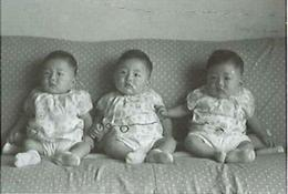 100_5_triplets.jpg